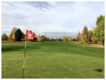 Hole 8 - 27 October 2016